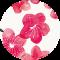 Graphic Blossom
