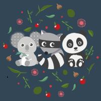 Koala, Panda, Raton laveur