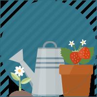 Arrosoire de jardinage