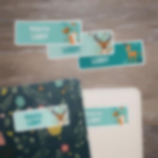 2 autocollants stickers rectangles etiquettes founitures ecole objets