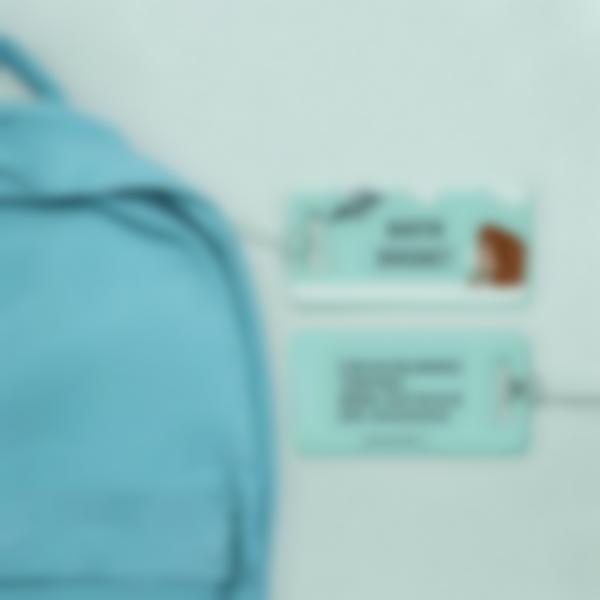 2 etiquette bagage valise sac cartable avion coordonnees