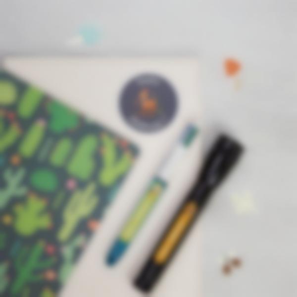 4 pack etiquettes objets trouseeau classe verte