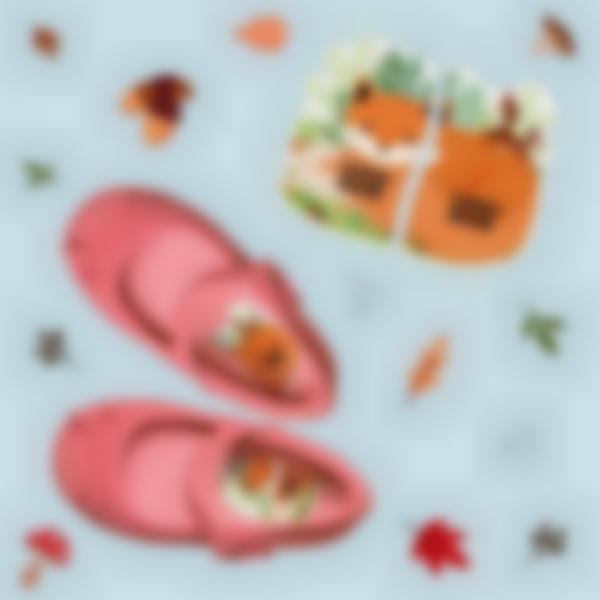 etiquettes chaussures intuitives enfant renard