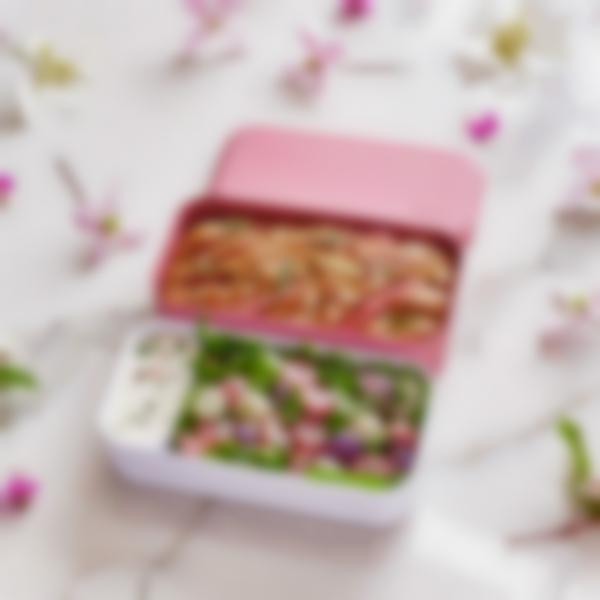 lunchbox adulte monbento original rose blush 04