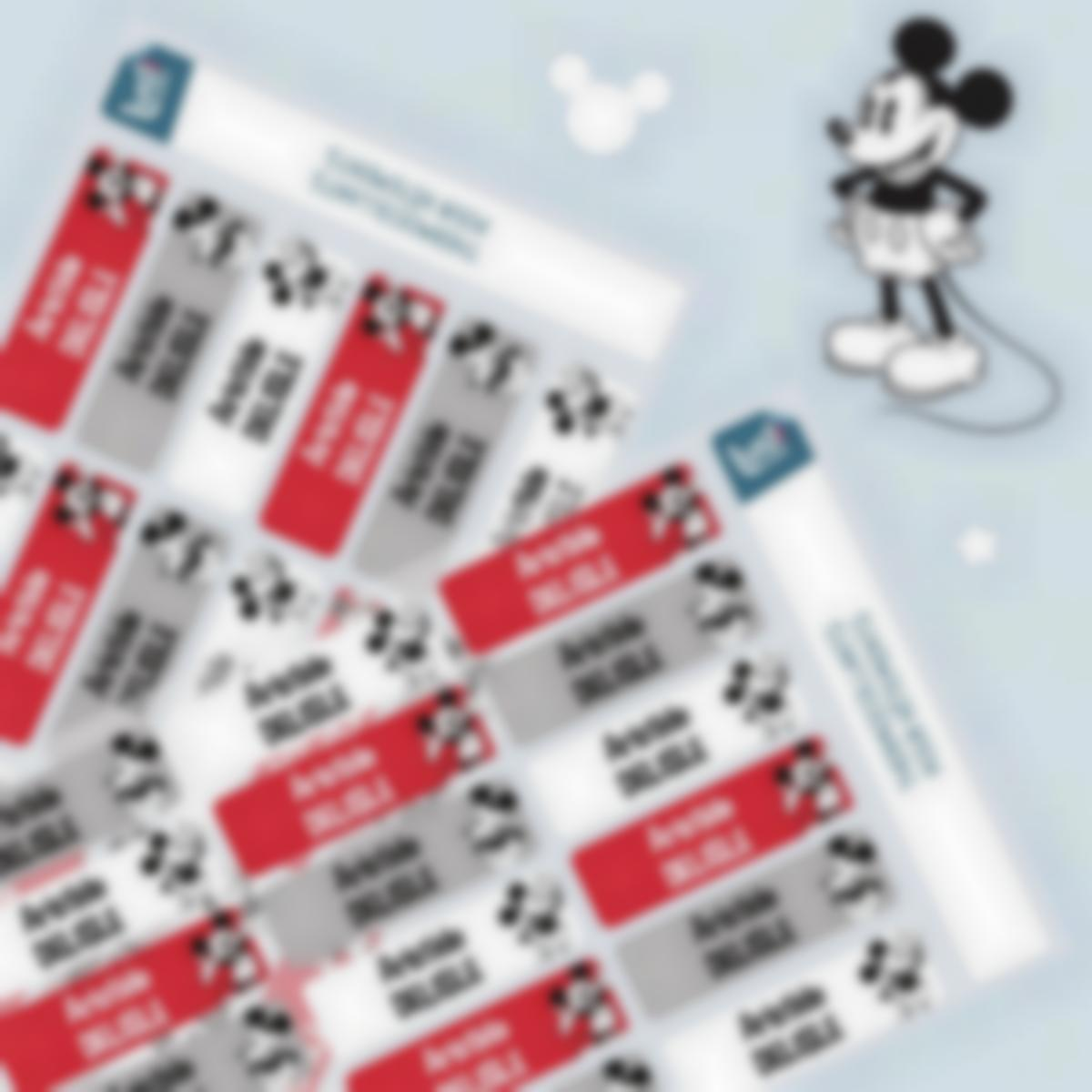 pack vetements mickey miniature